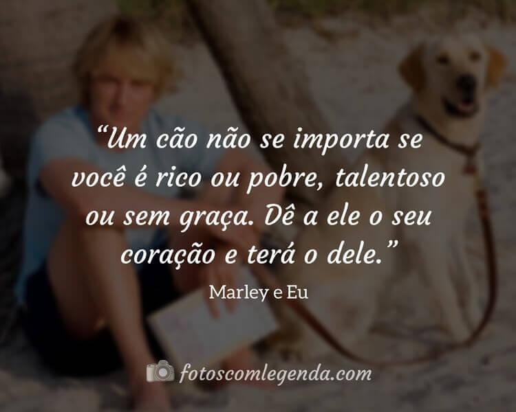 """""""Um cão não se importa se você é rico ou pobre, talentoso ou sem graça. Dê a ele o seu coração e terá o dele.""""— Marley e Eu"""