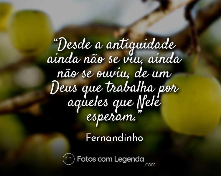 Frase Fernandinho Desde a antiguidade.