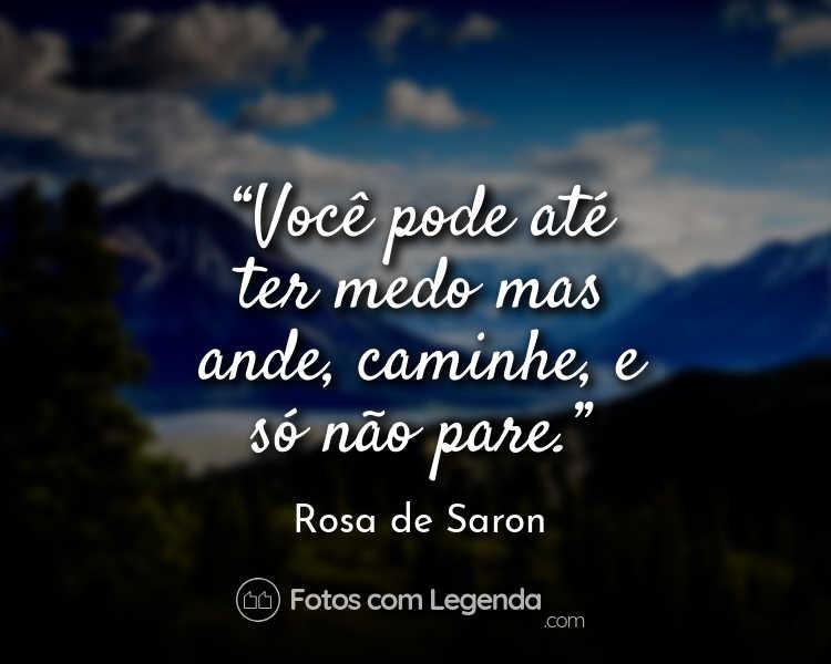 Frase Rosa de Saron Você pode até.