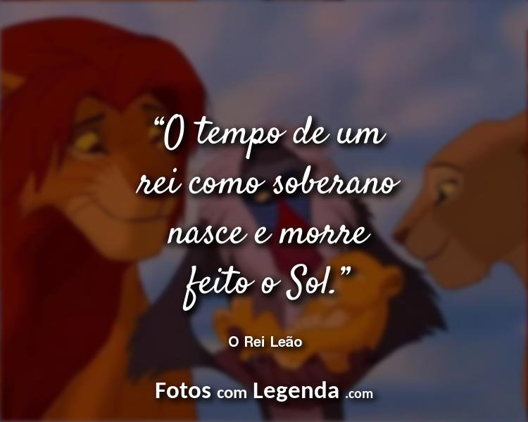 Frases O Rei Leão O Tempo de um.