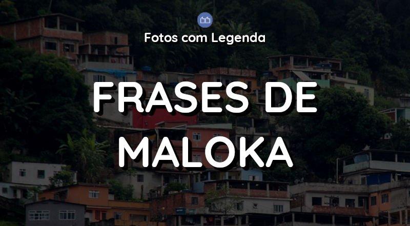 32 Frases de Maloka para Foto